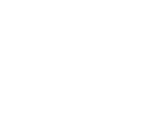 Steel Digital Studios logo